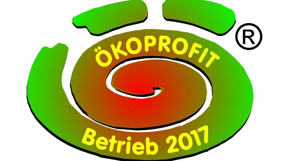 Dorfinstallateur Gütesiegel Ökoprofit 2017